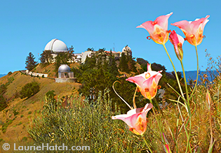 Domes of the Lick Observatory at Dusk